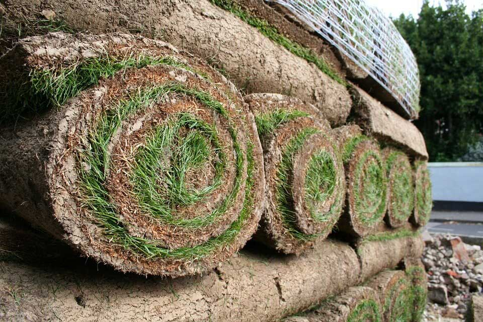 Broedell Sod installaions