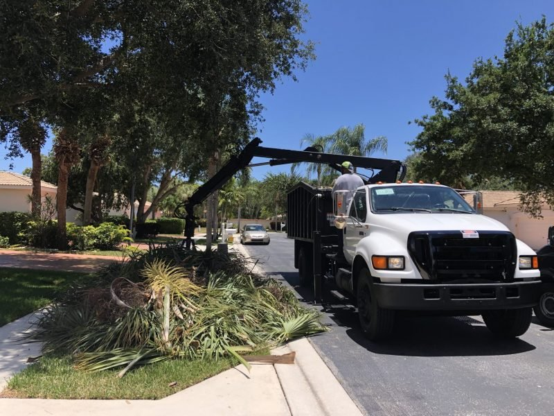 Commercial and HOA Landscape Debris Removal