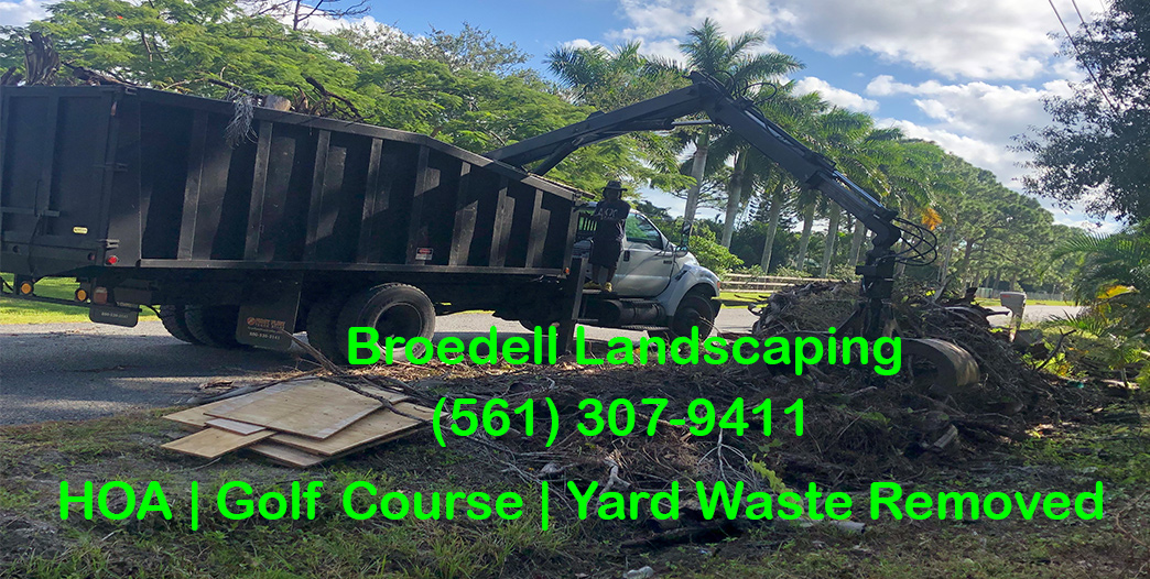 Grapple-Services-Vegetation-Junk-Removal-Trash-Removal‎ Palm Beach