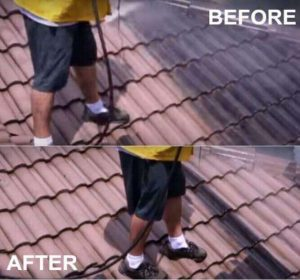 Pressure Cleaning your Roof to help with curb appeal see our before and afters. pictures of roof cleaning.